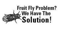 fruitflies